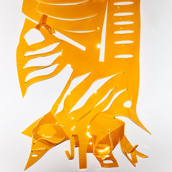 Michael Brorsen - Early Bird-Neon Akryl