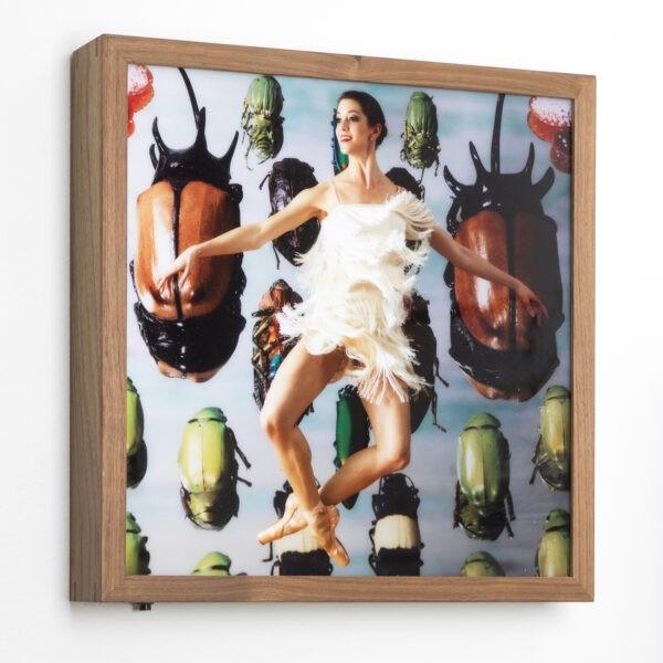 Michael Brorsen - Fantasy - 40 x 40 x 7