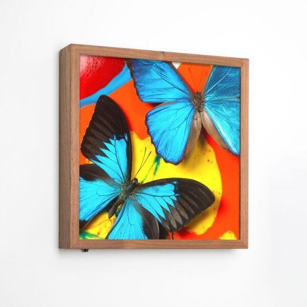 Michael-Brorsen-sommerfugle-lyskasse4